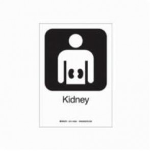 Brady® 142524 Rectangular Hospital Sign, 10 in H x 7 in W, Black on White, Self-Adhesive Mount, B-302 Polyester