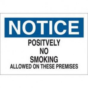 Brady® 88388 No Smoking Sign, 7 in H x 10 in W, Black/Blue on White, Surface Mount, B-302 Polyester